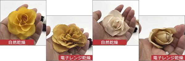 ドライフラワー「バラを2種類の作り方(シリカゲル)で比較」2