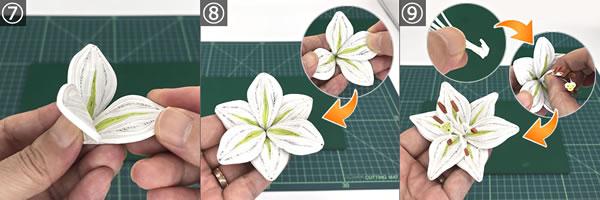 ペーパークイリングで手作り♪ゆりの花の作り方(組み立て方)!手順7~9